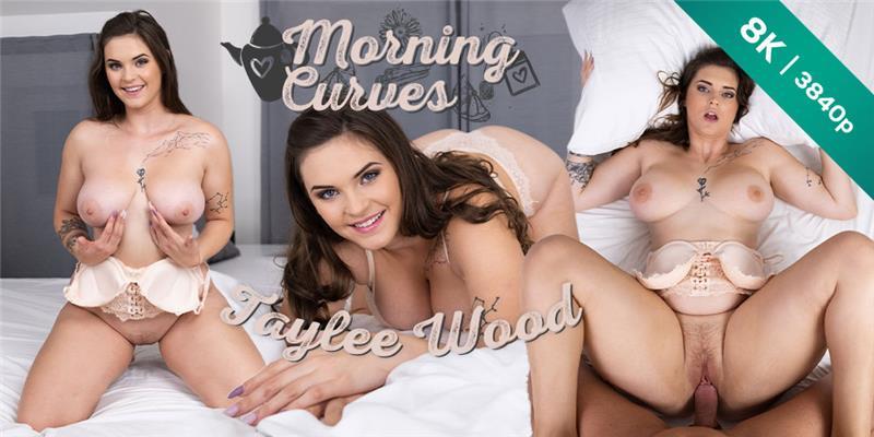 Czech VR 377 Morning Curves