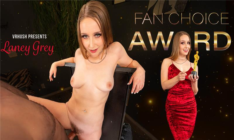Fan Choice Award - Hot Pornstar POV VR